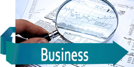 Business - Tax Preparation Services
